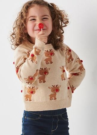 ToddlerUnisexReindeerSweater