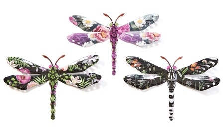 DragonflyMedium3Asst