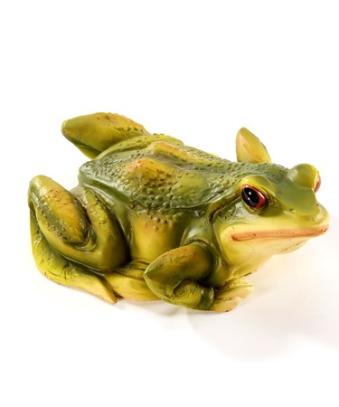FrogFloater