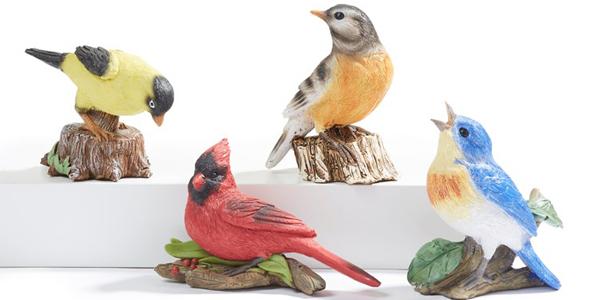 sweet_birds_garden_video.jpg