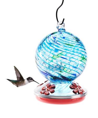 HummingbirdFeederwcover