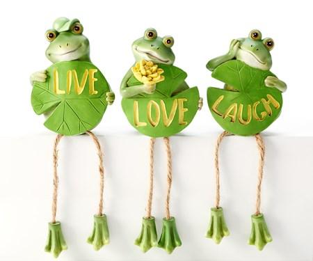 FrogShelfSitterwSentiment3Asst