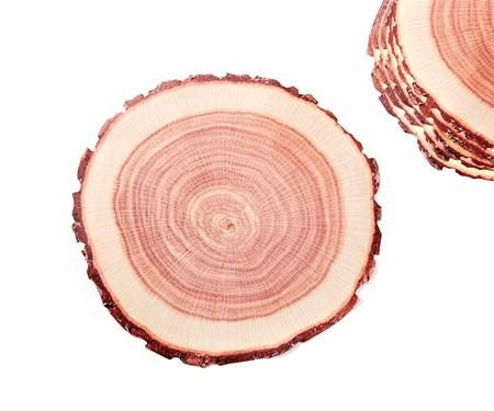 TreeTrunkDesignDisposablePlacematSet