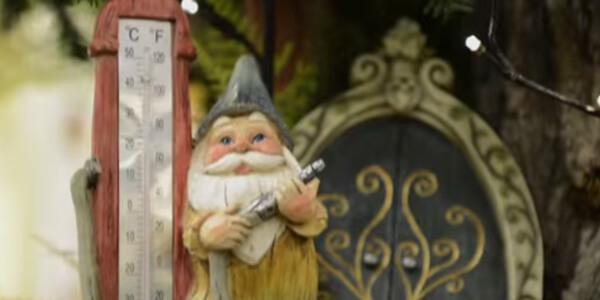 merch_video_gnome_hangout.jpg