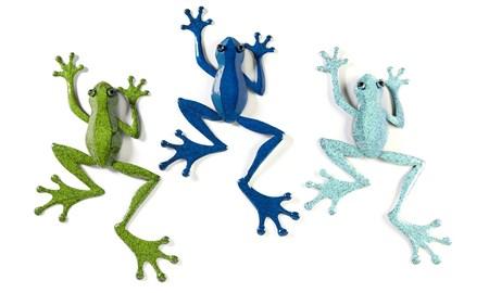 FrogWallDeacutecor3Asst