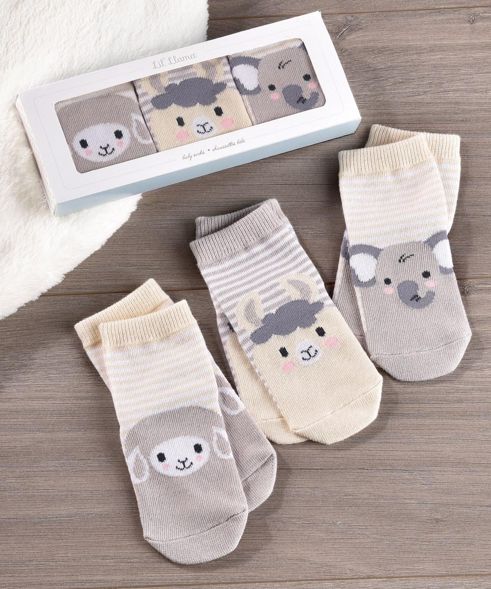 Lil' Llama Baby Socks, Gift Box Included. Set/3