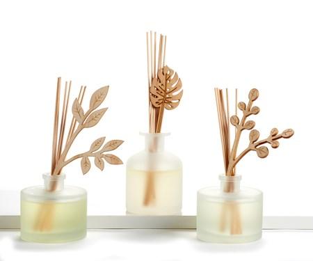 Reed & Glass Diffuser Set, 3/Asst.