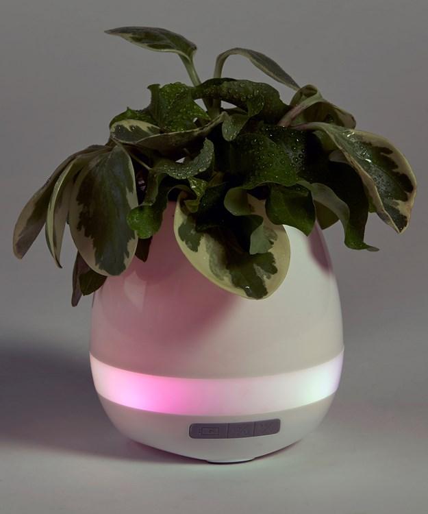 Smart Flowerpot