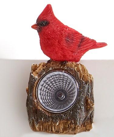 Cardinal Solar Lights