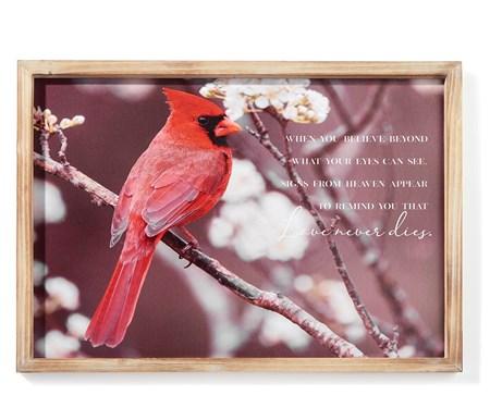 CardinalFramedCanvaswSentiment